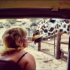 Maryann feeding a giraffe by mouth at Out of Africa in Camp Verde, AZ