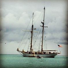 Photo of #westward by Ned Cabot, #w73 (1984), in the Caribbean. #tbt #SEASemester #studyabroad
