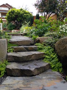 Stone steps leading from Front to Back yards. - Gretchen Bauer Design Stone steps leading from Front Landscaping On A Hill, Stone Landscaping, Landscaping With Rocks, Luxury Landscaping, Landscaping Software, Landscaping Company, Landscape Stairs, Landscape Design, Garden Design
