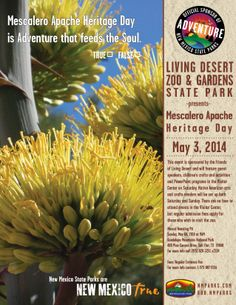 Mescalero Apache Hertiage Day