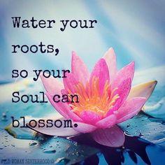 Water your roots, so your soul can blossom...  WILD WOMAN SISTERHOODॐ #WildWomanSisterhood #wildwomanmedicine #EmbodyYourWildNature