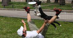 Dagli usa arriva in italia il tonus disc dog tour