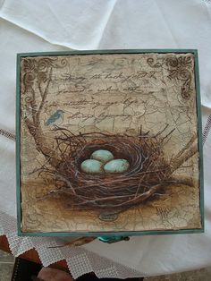 Untitled | Joy Hall | Flickr Bird Nests, Painting & Drawing, Decorative Boxes, Joy, Watercolor, Drawings, Frame, Pen And Wash, Picture Frame