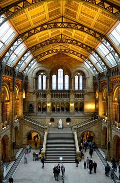 The Natural History Museum, naturally.