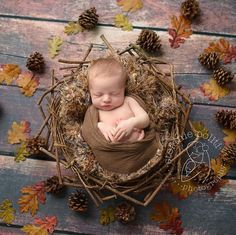 Fall is in the air! Autumn baby  Photo of the day shared by Stefanie Block Politi in Clinton New Jersey, the owner of Stefanie Politi Photography and she used my natural looking brown and woodland colored PuffPelt under baby in this imaginative newborn portrait! :)
