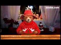 Guten Morgen - wünsche einen glücklichen Tag Paddington, Zoobe, Animation - YouTube