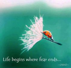 "Osho quote ""Life begins where fear ends"""