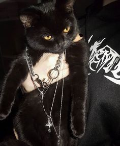 ig: – Cute & niceStuff – - Cats and Dogs House Grunge Tattoo, Punk Tattoo, Grunge Soft, Black Grunge, Instagram Baddie, Instagram Logo, Princesa Punk, Gatos Cool, Grunge Photography