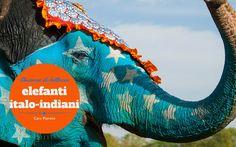 Concorso di bellezza degli elefanti italo-indiani - Caro Pianeta