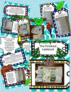Rainforest Lapbook Project...fun, interactive, and educational for kids!