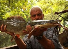 The Scariest River Monsters (110 pics)