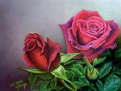rose flower drawings