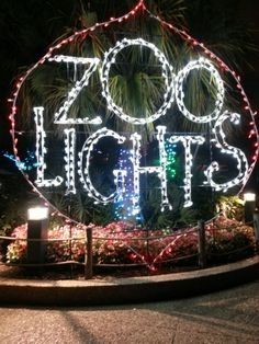 """See 1676 photos and 188 tips from 14042 visitors to Houston Zoo. """"Really nice zoo. Big enough to have lots to see, but small enough you can see it. Houston Zoo, Beautiful Park, Really Cool Stuff, Neon Signs, Lights, City, Animals, Animales, Animaux"""