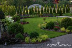 Ogród mały, ale pojemny;) - strona 40 - Forum ogrodnicze - Ogrodowisko