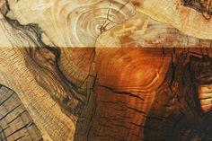 End Grain Veneer by Rohol Furniere materials
