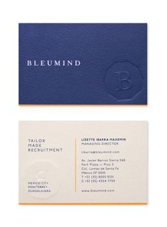 Bleumind. by Face. , via Behance