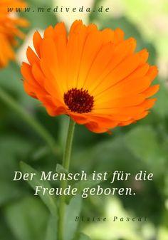 """""""Der Mensch ist für die Freude geboren."""" (Blaise Pascal)"""