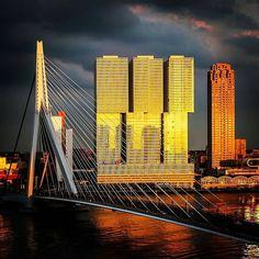 Let's Go ! Rotterdam #Netherlands <3