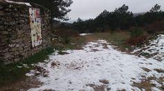 Sierra de San Vicente (Toledo) - Estampas de invierno (9)