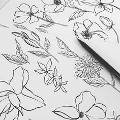 karen hsing  Black and white lines • • #pen #brushpen #ink #flowers #lines #doodle #textiles #pattern #prints #surfacedesign #swimwear #tropical #wip #textiledesign