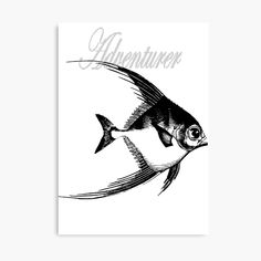 'Adventurer The Fish' Canvas Print by Beer-Bones Canvas Prints, Art Prints, Adventurer, Just Go, Bones, Fish, Printed, Awesome, Artist