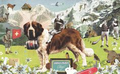 Studio Ping - Swiss Magazine