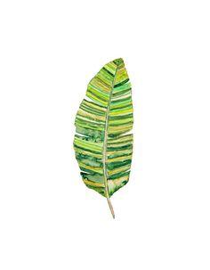 Banana Leaf Watercolor Print.  Tropical Leaf by SnoogsAndWilde