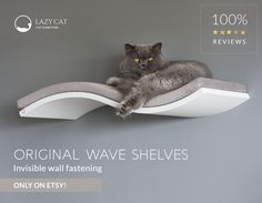 Best quality cat floating shelves