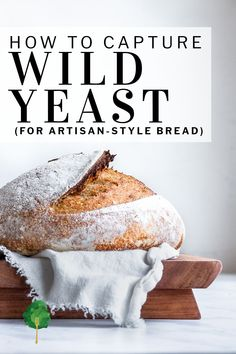 Wild yeast exists all around you, and, with a little patience, you can capture it to make an amazing starter for artisan bread. Unlike sourdough, this method requires absolutely no maintenance.  Just toss fruit in a jar of water, wait about 5 days and then you'll have a bubbly, yeast water you can use to make artisan-style breads.