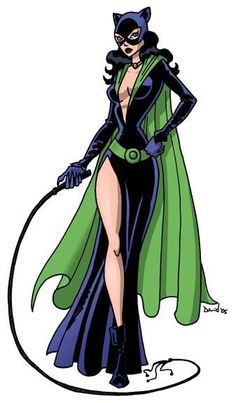 This is one of my favorite Catwoman costumes that I have seen. I might make the green cape longer, and the neckline a little higher, but the rest looks great.