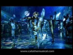 The Cats at the Jellicle Ball - HD, from Cats the Musical - the film Cats Musical, Musical Theatre, Cats That Dont Shed, Jellicle Cats, Cat Movie, Black Veil Brides, Buy Tickets, Old Things, Random Things