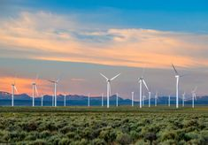 Pair that with the never-ending wind in the Cowboy State, and we could potentially become the energy supplier for the entire country. Already exports wind energy to Colorado, Oregon and Utah.