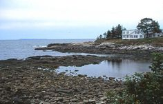 Dream early retirement. Coastal Maine.