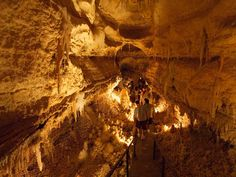 Go spelunking to see an underground mansion, lava flows, a bat colony and the tracks of a giant Pleistocene jaguar. Plan a family trip to visit Carlsbad Cavern, Mammoth Cave and more! Oh The Places You'll Go, Great Places, Places To Visit, Amazing Places, Beautiful Places, Mammoth Cave, Down South, Amazing Destinations, The Great Outdoors