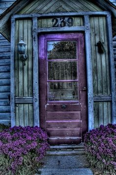 door - love the colours on this!