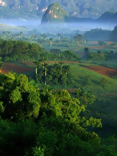 Vale of Vinales Morn - , Pinar del Rio, Cuba www.cuba-junky.co...