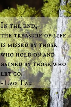 In the end, the treasure of life is missed by those who hold on and gained by those who let go. -Lao Tzu #quote