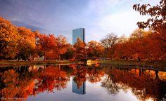 Public garden in autumn