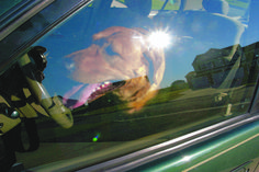 Police and animal control empowered to break into cars with dogs trapped inside  ||  How many times have you seen a dog yelping to get out of a parked car with the doors locked and the windows closed on a hot or sub-zero day and felt helpless to do anything about it? Dog-loving Ald. Gilbert Villegas (36th) has seen too much of it – and he has finally done something about…