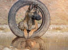 Wheels by Tanja Brandt on 500px