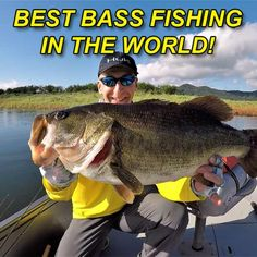 Are you looking for the best bass fishing lakes and rivers in the world? We cover the top rivers and lakes in the world for bass fishing in this article as voted up by our forum members. Bass Fishing Tips, River, World, The World, Rivers