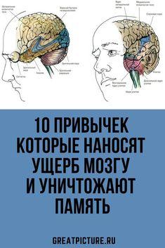 10 habits that damage the brain and destroy memory - Healt World Herbal Remedies, Natural Remedies, Flu B, Health Savings Account, Health World, Herbal Medicine, Body Care, Herbalism, Brain
