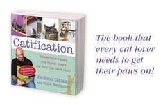 """Catification"" by Jackson Galaxy & Kate Benjamin                                                                                                                                                                                 More"