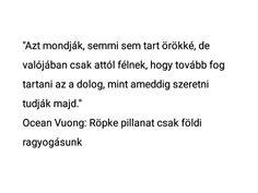 Ocean Vuong Math Equations