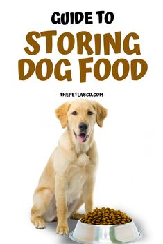 If you're spending money on some quality, premium dog food, you don't want it to go to waste, so the way you store it is very important. Dog food when exposed to light and air it can become rancid very quickly. It can also make your puppy sick! Check this guide for storing dog food. #dogfood #dogtips #doghealth #dog