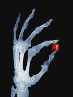 Skeletal Hand Holding Computer Chip Photographic Print by Charles O'Rear
