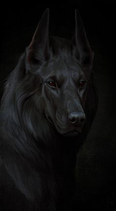 Pin by eduardo reyes vargas on monster perros negros, arte o The Ancient Magus, Anubis, Mythical Creatures, Dog Art, Fantasy Art, Concept Art, Beast, Pictures, Animals