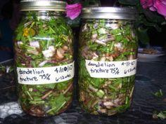 dandelion tincture recipe