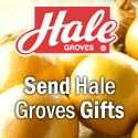 Hale Indian River Groves is located in Indian River County near Vero Beach and Wabasso, the very heart of the famous Indian River Citrus Belt -- a relatively small but premier citrus producing area in Florida. Hale Groves is fortunate to have a special combination of rich soil, ample water supply, and moderate climate - very rarely reaching a freezing temperature. All this, combined with our modern grove management, are contributing factors that make our oranges and grapefruit the juiciest…