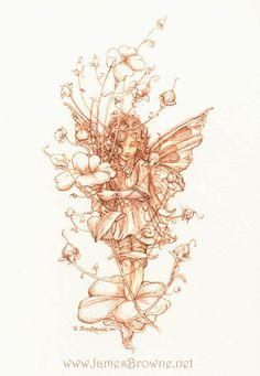 james brown  //  flower fairy